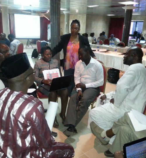 Nigeria STOP Polio Training